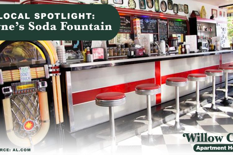Local Spotlight: Payne's Soda Fountain