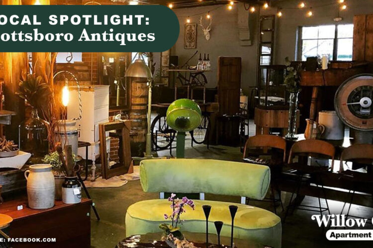 Local Spotlight: Scottsboro Antiques