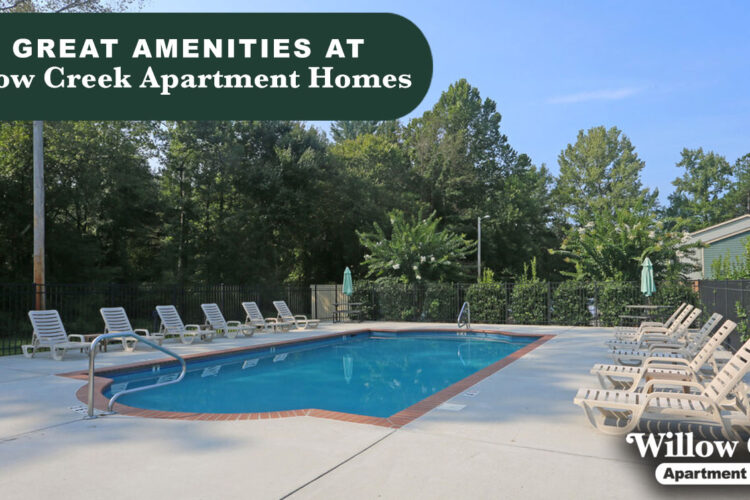 8 Great Amenities at Willow Creek Apartment Homes