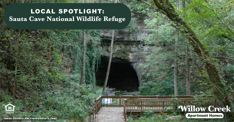 Local Spotlight: Sauta Cave National Wildlife Refuge